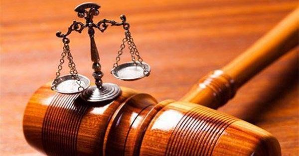 القاضي ابراهيم أمر بتوقيف صاحب معمل ميموزا وأصحاب أربعة معامل أجبان بالمرج